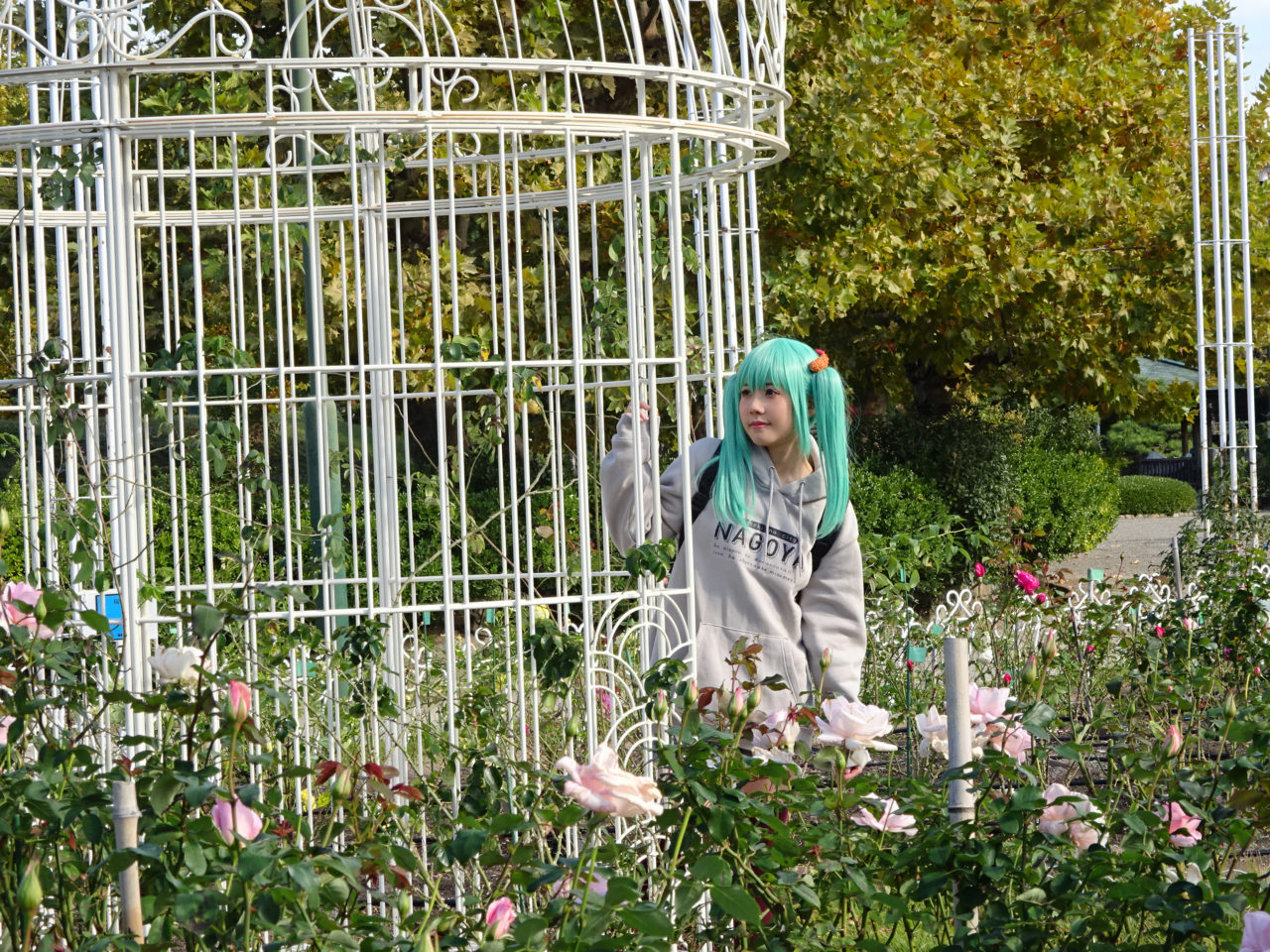 コスプレ撮影OKな薔薇園